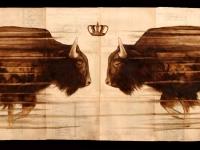 buffalo-fading-web
