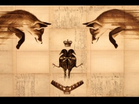 foxes-birds-1-web